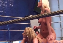 Busty wrestling sweethearts relating to a boxing ring